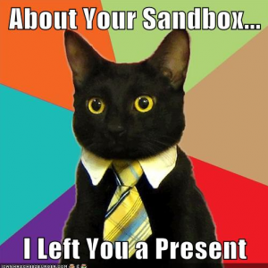 sandbox-meme-cat